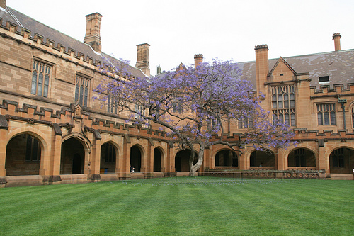 university_of_sydney_foundation_program